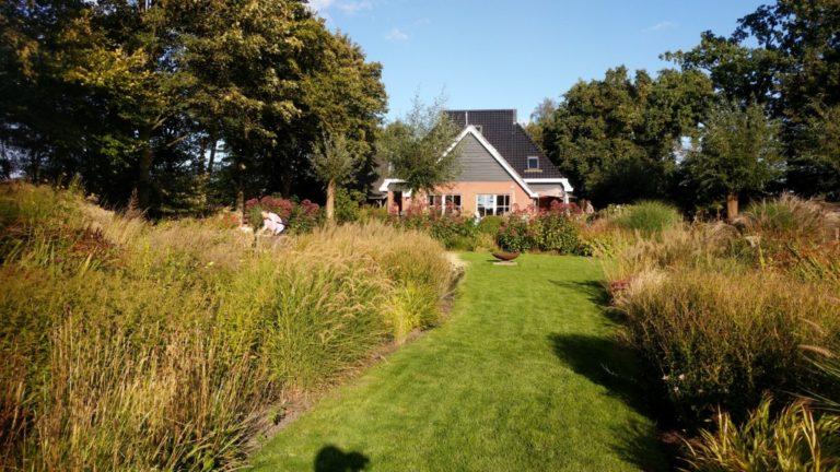 Dutch Wave tuinen