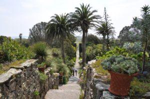 Tresco Abbey Garden