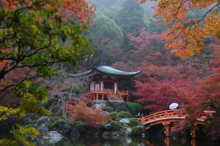 Japan Herfstkleuren